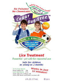 Lice Treatment